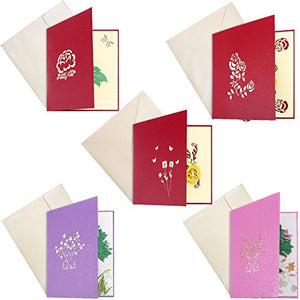 3D Pop Up Greeting Cards for All Occasions (5 Pack)