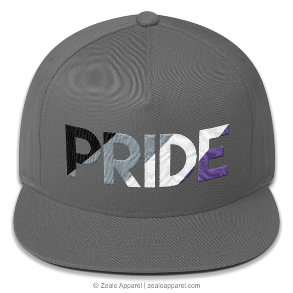 Asexual Pride Snapback Hat (Front) - Zealo Apparel LGBTQIA Accessories