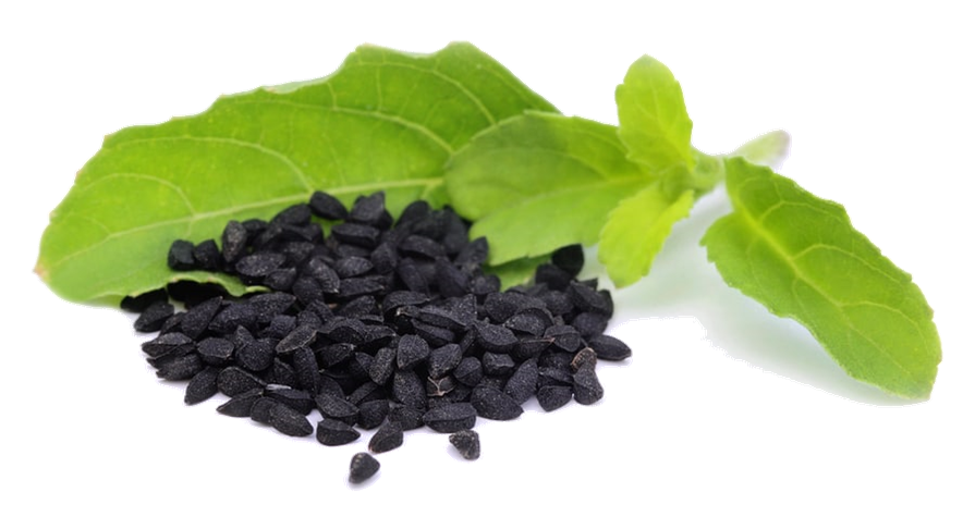 """What is Black Seed"" I Asked"
