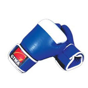 GTMA Two Tone Leather Boxing Gloves - SparringGearSet.com - 2