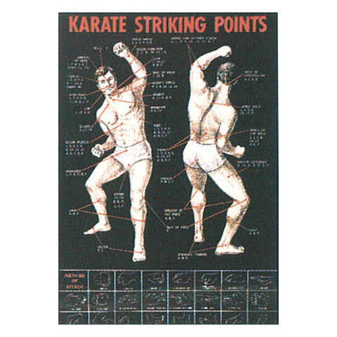 Karate Striking Point Poster - SparringGearSet.com