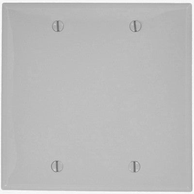 2-Gang, No Device, Blank Wall Plate, Standard Size