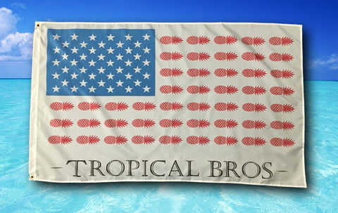Pineapple American Flag - Tropical Bros Style