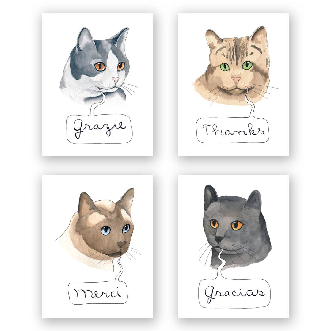 International Cats Thank you - Box Set 16 Cards