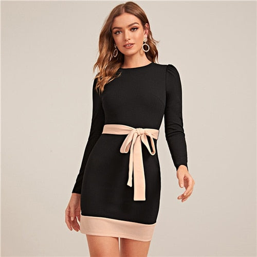 Two Tone Elegant Bodycon Dress With Belt Women Spring Long Sleeve Zipper Back High Waist Office Lady Short Pencil Dresses