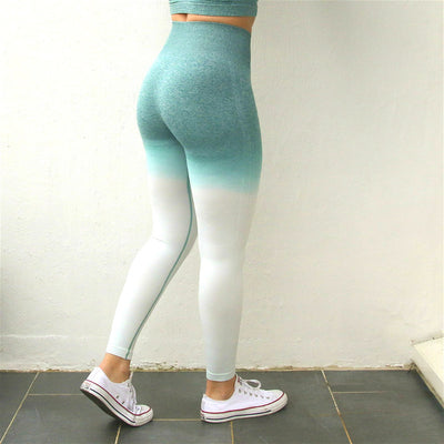 Women Ombre Seamless Leggings In TEAL High Waisted Yoga Pants