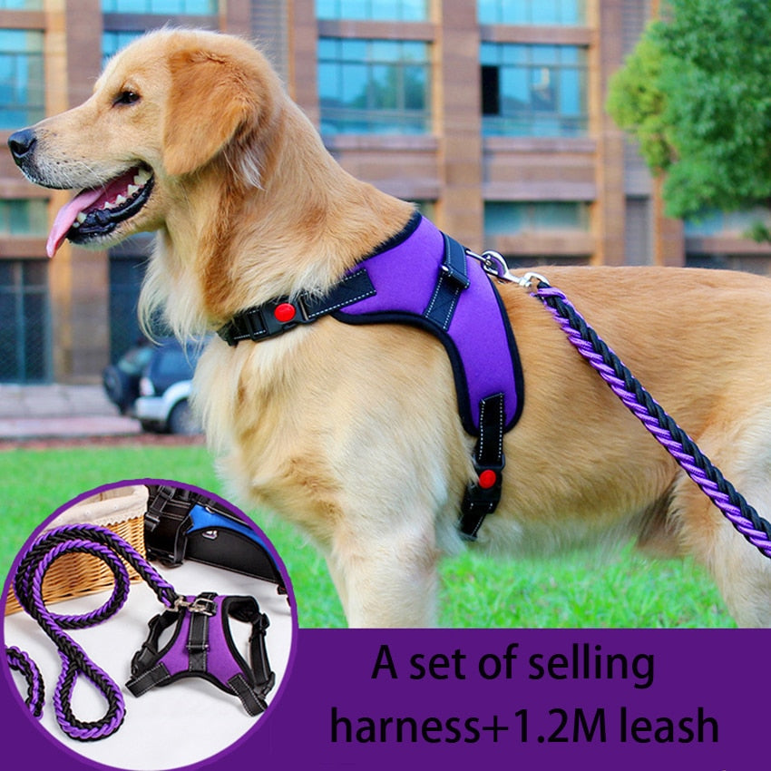 Reflective Dog Harness Leash Set Pet dog  Lead Adjustable Vest Harnesses for Small Meduim Large Dogs Training Walking Perfect