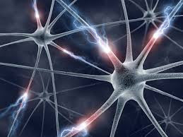 mBraining: Neurons That Wire Together Fire Together