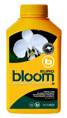 Bloom Euro B - BloomYellowBottles