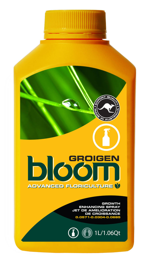 Bloom Groigen - BloomYellowBottles