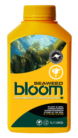 Bloom Seaweed - BloomYellowBottles