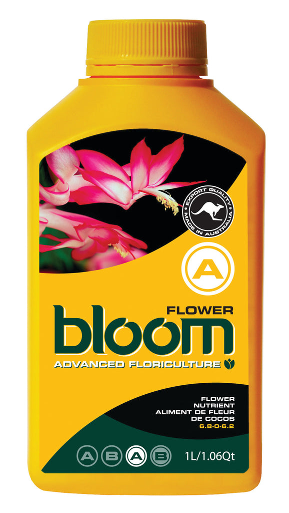 Bloom Flower A #bloom #flower