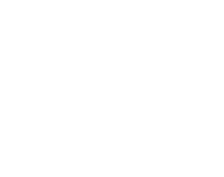 MarionMax