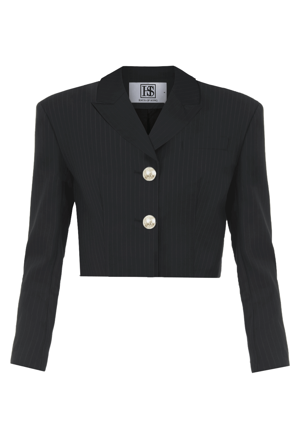 DOMINIQUE Pinstriped Cropped Blazer | HAUS OF SONG