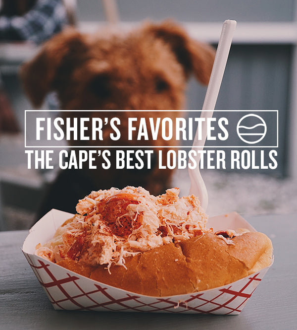 5 MUST-TRY LOBSTER ROLLS ON CAPE COD