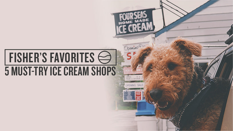 5 MUST-TRY ICE CREAM SHOPS ON CAPE COD