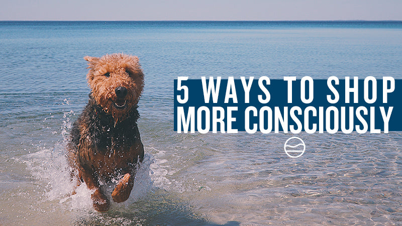 5 WAYS TO SHOP MORE CONSCIOUSLY