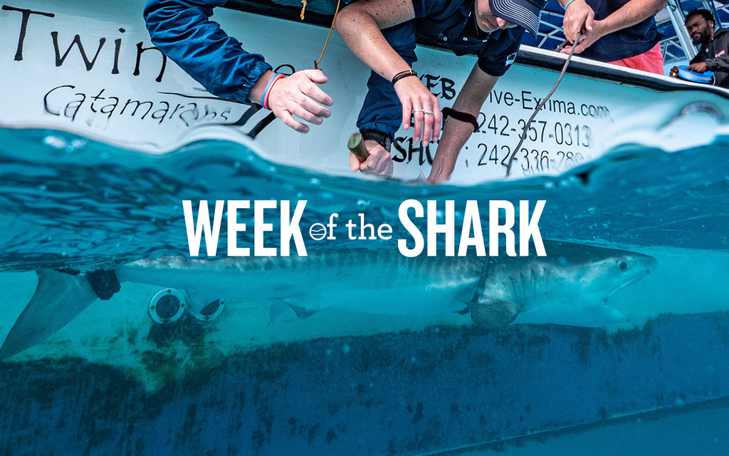 Week of the Shark [SIGN UP]