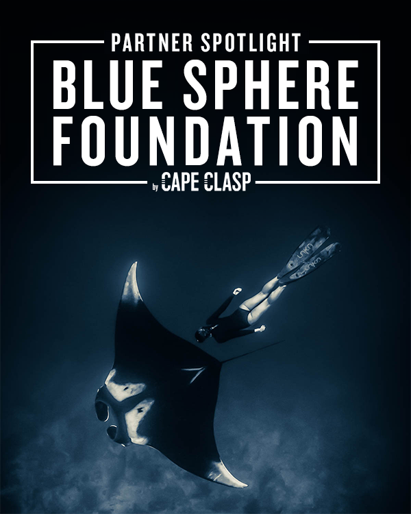 PARTNER SPOTLIGHT: BLUE SPHERE FOUNDATION