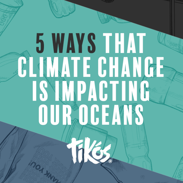 5 Ways Climate Change is Impacting the Ocean
