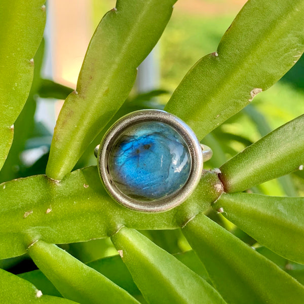 Halo Ring + Blue Labradorite