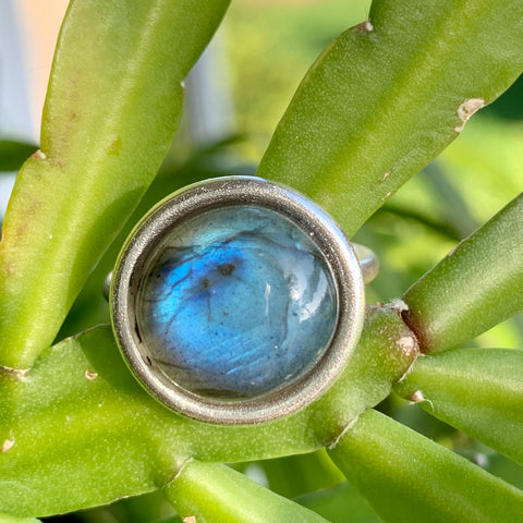 Halo Ring + Labradorite