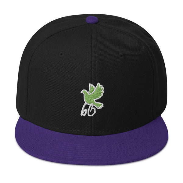 Bird's Eye View Snapback Hat