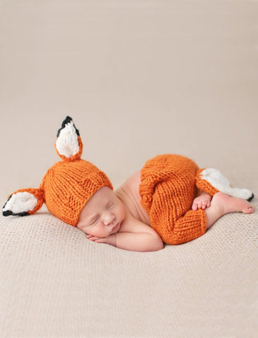 The Blueberry Hill Fox Newborn Set