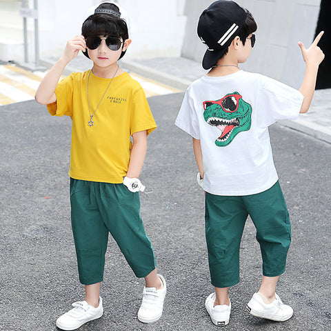 Boy suit _19 new summer cartoon dinosaur t-shirt boy suit