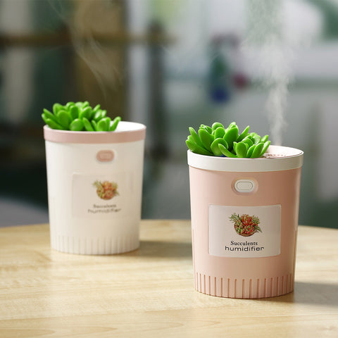 Car air purifier_succulent humidifier household air purifier