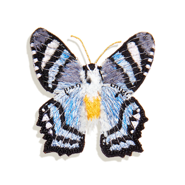 Gray Cliff Butterfly Brooch Blue