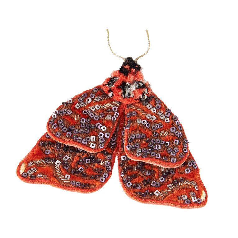 Mignonne Gavigan Philo Moth Brooch in burnt orange