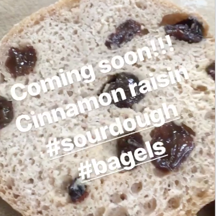 Cinnamon Raisin Sourdough Bagels (6 Pack)