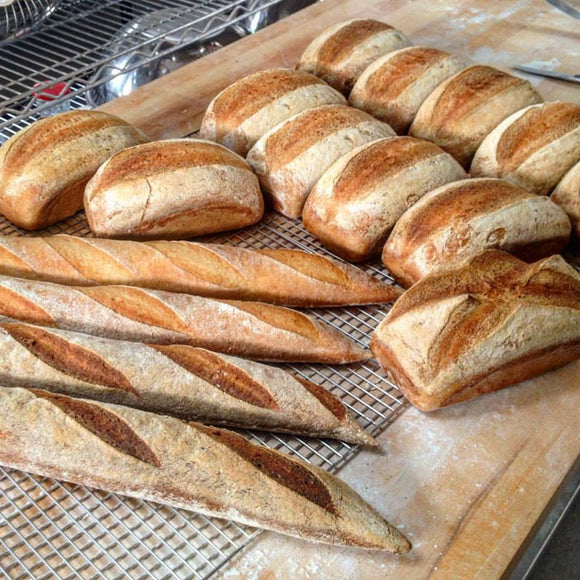 Gluten-free Sourdough Breads and Bagels -
