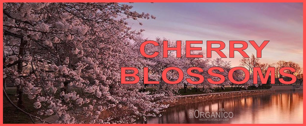 Simply Organico Cherry Blossoms Collection of luxury handcrafted handmade bath and body products