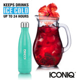 ICONIQ 17oz Lush Green Water Bottle - Stainless Steel Vacuum Insulated