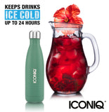 ICONIQ 17oz Green Water Bottle - Stainless Steel Vacuum Insulated