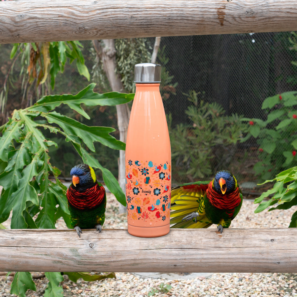 17oz Wonder Bottle - Birds
