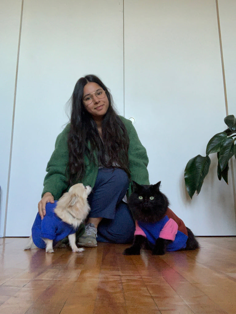 TWINNING tricolor pet sweatshirt