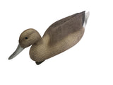 Plasti-Duk Pintail 6 Pack 24x9 BP-35 Foam Filled Decoys Made in USA