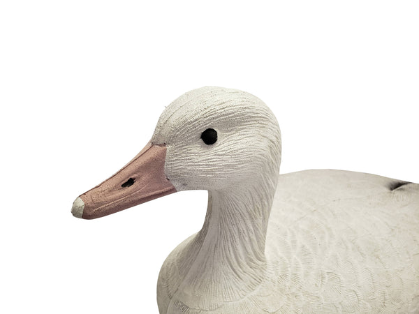 Plasti-Duk Snow Goose 6 Pack 24x9 Foam Filled Floaters Made in USA