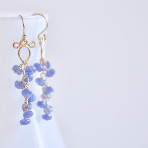 Leyla - Tanzanite, 14k Gold Filled Earrings