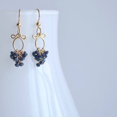 Meredith - Sapphires, 14k Gold Filled Earrings