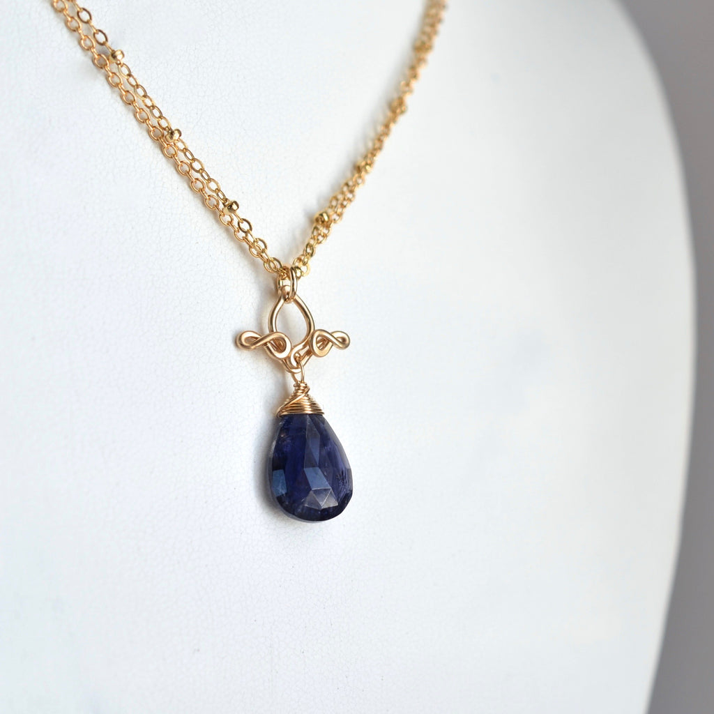Petite Pamela - Iolite, 14k Gold Filled Necklace