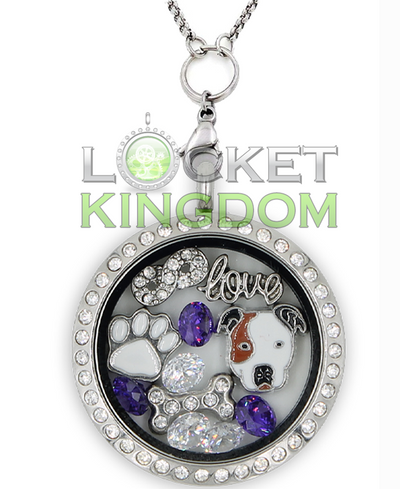 Infinity Love Pit bull Charm Locket