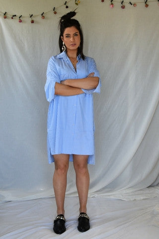 Larsson Shirt Dress Dresses, Shop Serendipity Ave, Shop Serendipity Ave  - Shop Serendipity Ave