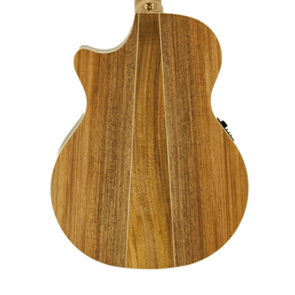 Cole Clark Angel 2 Series Redwood Top with Blackwood Back and Sides