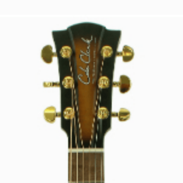 Cole Clark Fat Lady 2 Series in Sunburst Australian Blackwood Top, Back and Sides