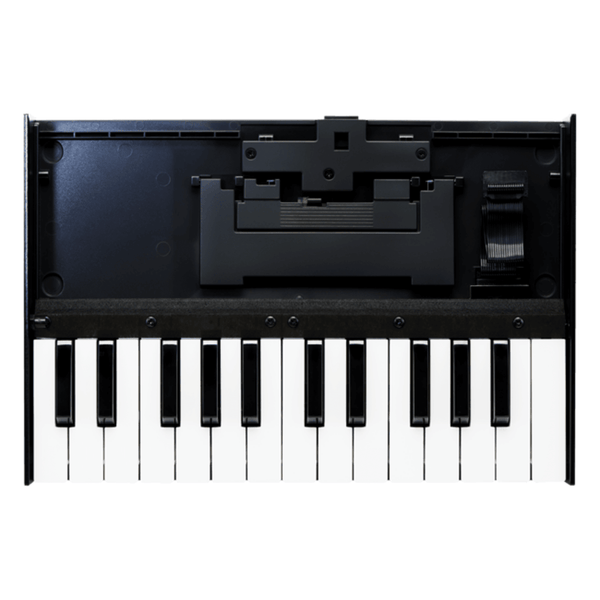 Rent Roland Boutique K-25M
