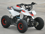 110cc Quad Bike Thunderstarter 4 Stroke With Electric Start - MotoX1 Motocross ATV